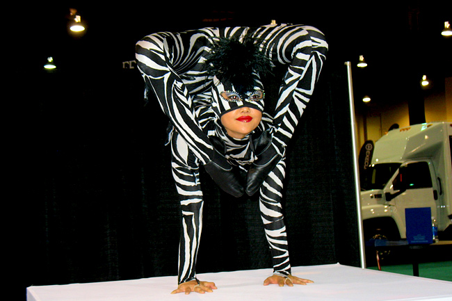 Contortionists In Las Vegas